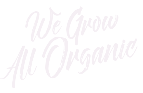 We Grow All Organic